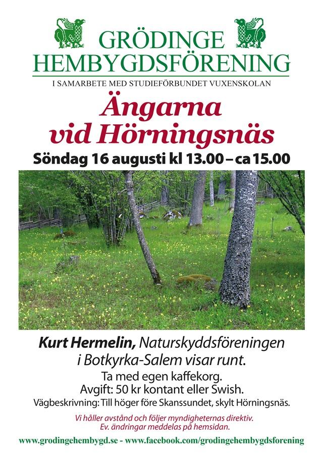 200816 Affisch Hörningsnäs 640